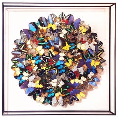Butterflies Multi-Colors Wall Decoration