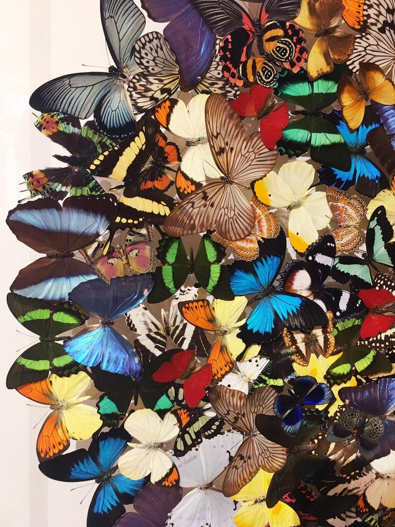 Hand-Crafted Butterflies Multi-Colors Wall Decoration For Sale