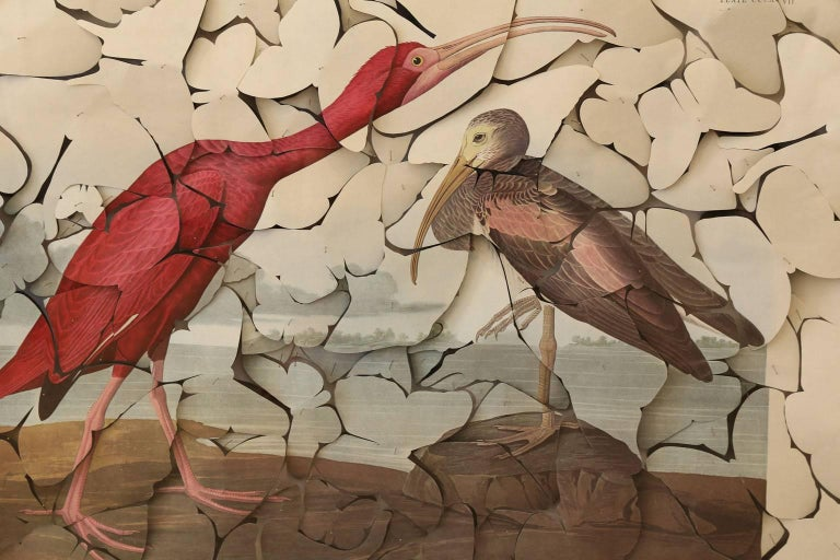 Butterfly box Scarlet Ibis: vintage color-printed lithograph, on fine handmade paper (of Robert Havell's 'Scarlet Ibis,' after John James Audubon, Amsterdam Edition, 1972) cut into butterfly shapes then pinned into their original positions as