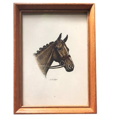 C Fred Sitzler Framed Portrait of a Horse for Gallery Wall in Wood Frame