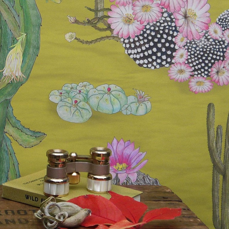 Other Cactus Mexicanos in Limon Botanical Wallpaper For Sale