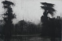 Rio Itaya no. 2, Jungle series - Tropical Forest Landscape