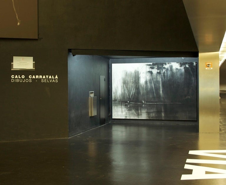 Pencil and charcoal on canvas, 200 cm × 300 cm. Selvas Negras n°2 is a large-scale drawing by Spanish contemporary artist Calo Carratalá, taken from the