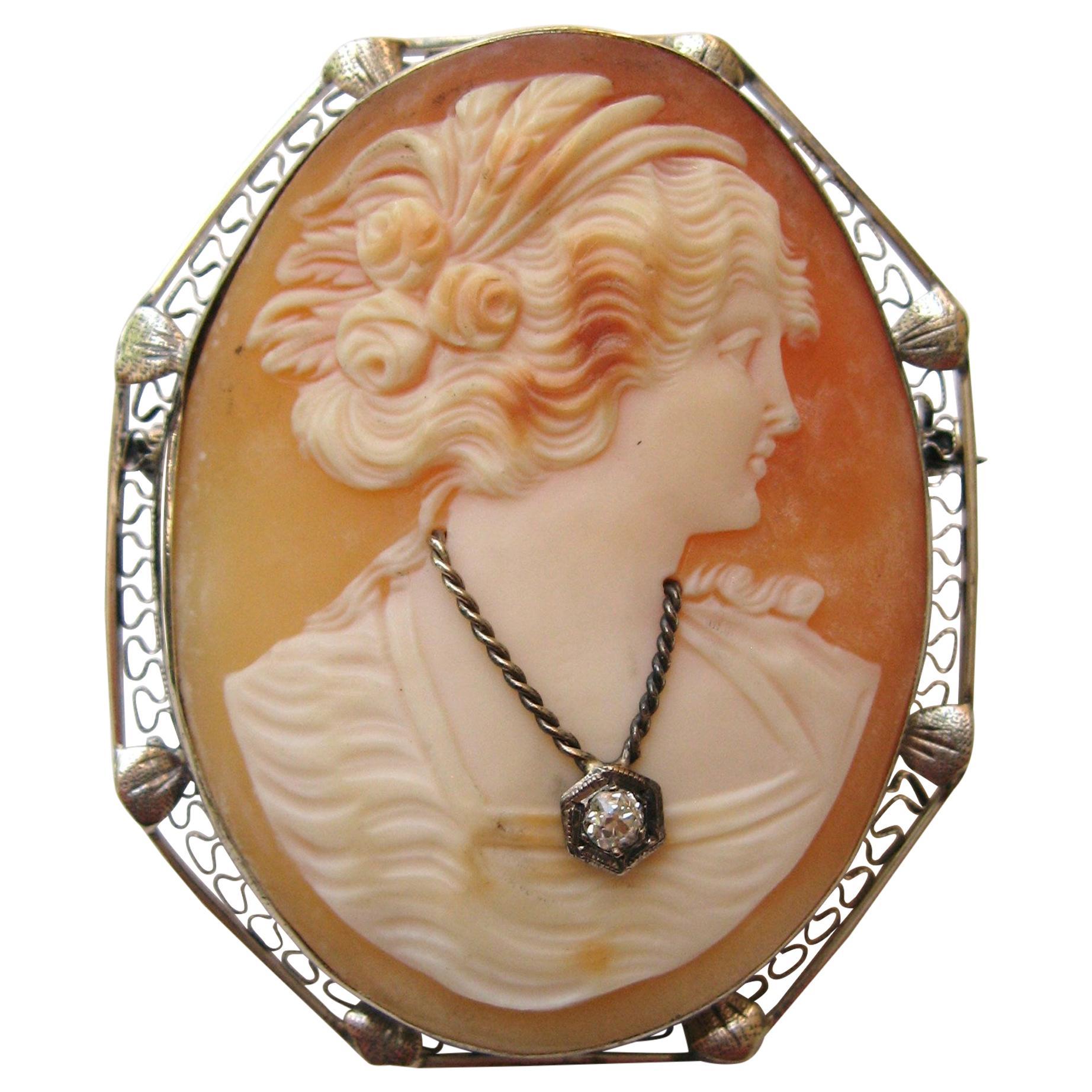 Cameo 14 Karat White Gold Brooch Diamond Pendant