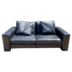 Camerich Company Chic Leather Loveseat Sofa + Comfy Down Feather Wrap Seattle Wa