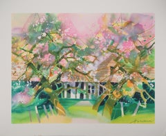 Spring : Apple Trees in Blossom  - Original lithograph