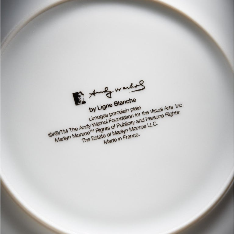 Campbell's Soup Dinner Plates, after Andy Warhol For Sale 1
