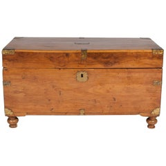 Camphor Wood Trunk with Hinged Lid, Brass Handles and Mounts, on Turned Feet
