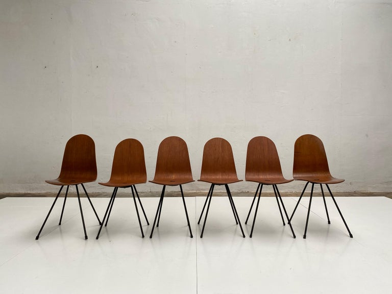 Mid-Century Modern Campo & Graffi Dining Set Comprising 6 Chairs & Matching Table, 1958, published For Sale