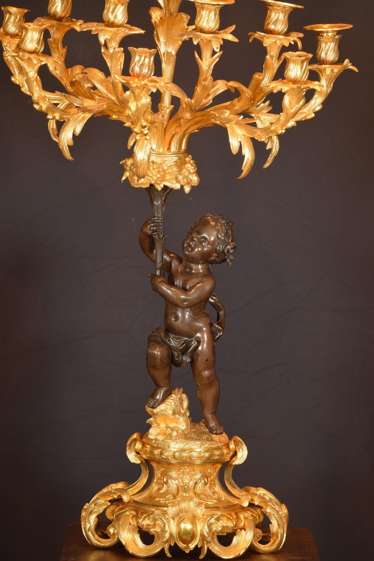Candelabra Pair, Bronze, France, 19th Century For Sale 5