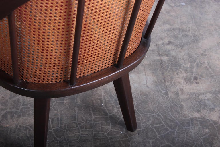 Cane Armchair Attributed to Harvey Probber For Sale 3