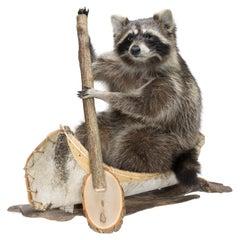 Canoeing Raccoon Taxidermy
