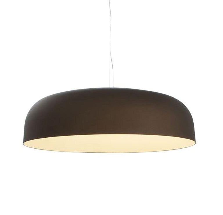 Italian Canopy Suspension Lamp by Francesco Rota for Oluce For Sale