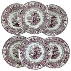 'Canova' Purple on White English Staffordshire Transferware Dinner Plates, Set/6