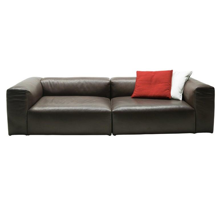 For Sale: Brown (Leather 915) Cappellini Oblong System Sofa in Multi-Density Foam & Fabric by Jasper Morrison