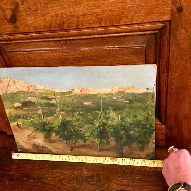 Capri Italy 19th Century Italian Countryside Landscape by Alceste Campriani For Sale 2