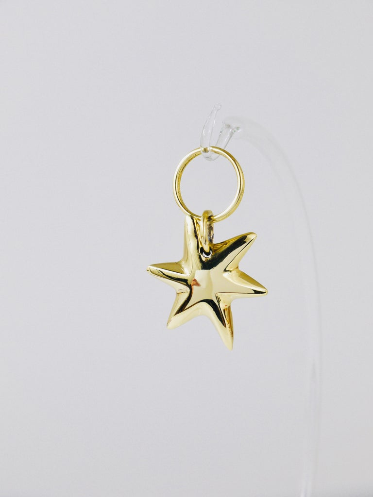 Polished Carl Auböck Midcentury Brass Star Sea Star Starfish Key Ring Chain Holder For Sale