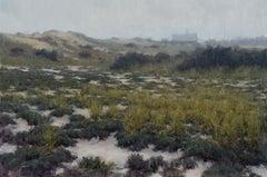 Amagansett Dunes