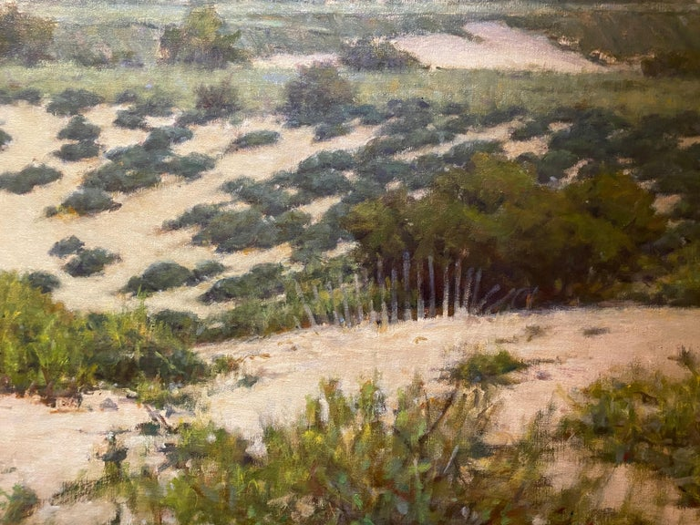 Beyond the Dunes For Sale 1