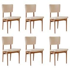 Carlo Hauner and Martin Eisler Set of 6 Dining Chairs, Brazil, 1955