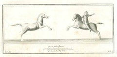 The Horse And The Rider-Ancient Roman art-Etching by Carlo Nolli-18th Century