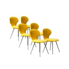 Carlo Ratti Midcentury Mustard Velvet Italian Set of 6 Chairs, Italy, 1950