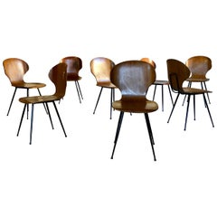"Carlo Ratti Midcentury Plywood ""Lulli"" Dining Chairs for Legni Curvati, 1950s"