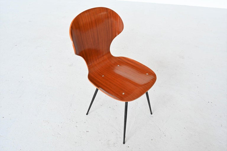 Carlo Ratti Plywood Teak Dining Chairs Lissoni, Italy, 1950 For Sale 3
