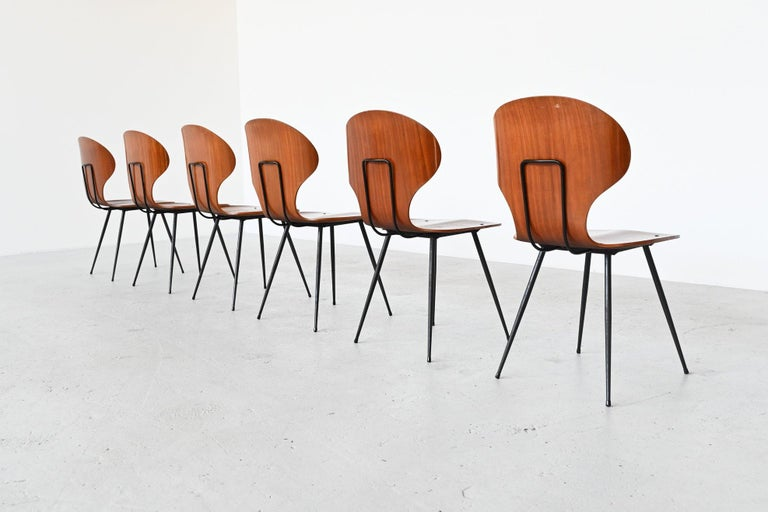 Beautiful elegant set of six dining chairs designed by Carlo Ratti and manufactured by Lissoni, Italy, 1950. These chairs have a teak plywood seat and black lacquered metal legs. The seat features a wingback with very nice curves. The curved seat is
