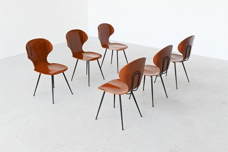 Lacquered Carlo Ratti Plywood Teak Dining Chairs Lissoni, Italy, 1950 For Sale
