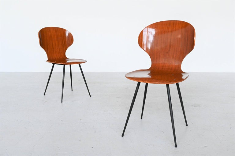 Carlo Ratti Plywood Teak Dining Chairs Lissoni, Italy, 1950 For Sale 1