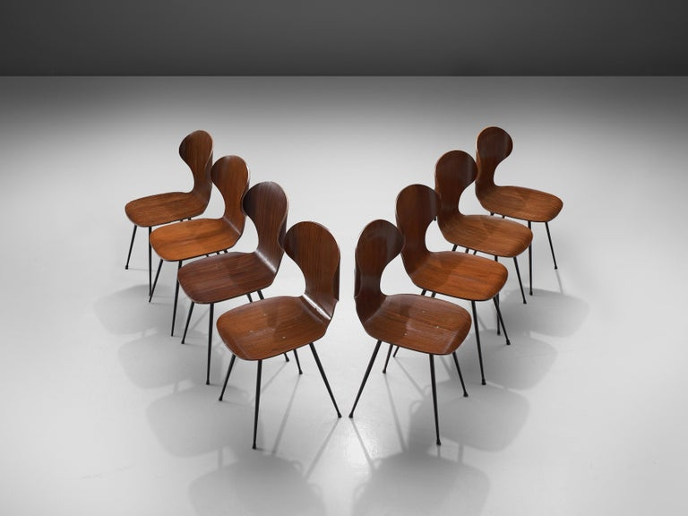 Carlo Ratti for Industria Legni Curvati, set of 8 dining chairs, plywood and metal, Italy, 1970s  Elegant set of Italian dining chairs with a metal frame and plywood seats by Carlo Ratti. The seat features a wingback shape with remarkable curves.
