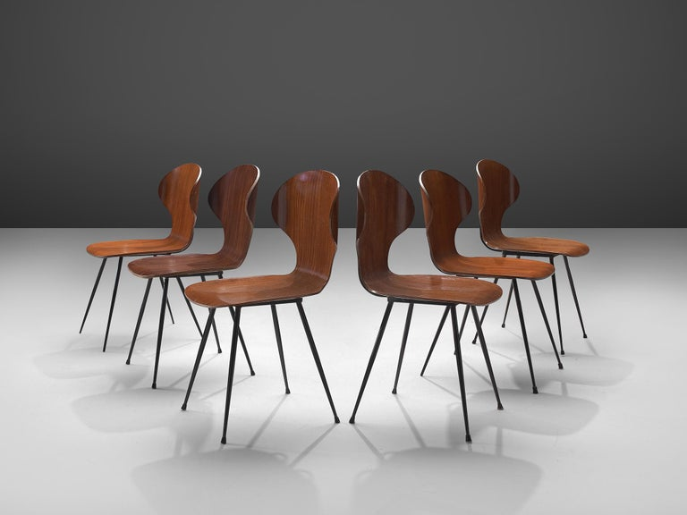 Mid-Century Modern Carlo Ratti Set of Six Dining Chairs of Plywood and Metal For Sale
