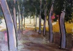 Poplars near the Eresma river