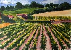 Saint Emilion wineyard