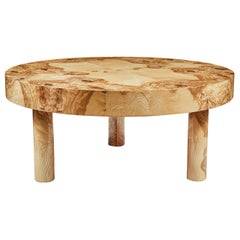 Carlton Coffee Table in Olive Ash Burl Wood by August Abode