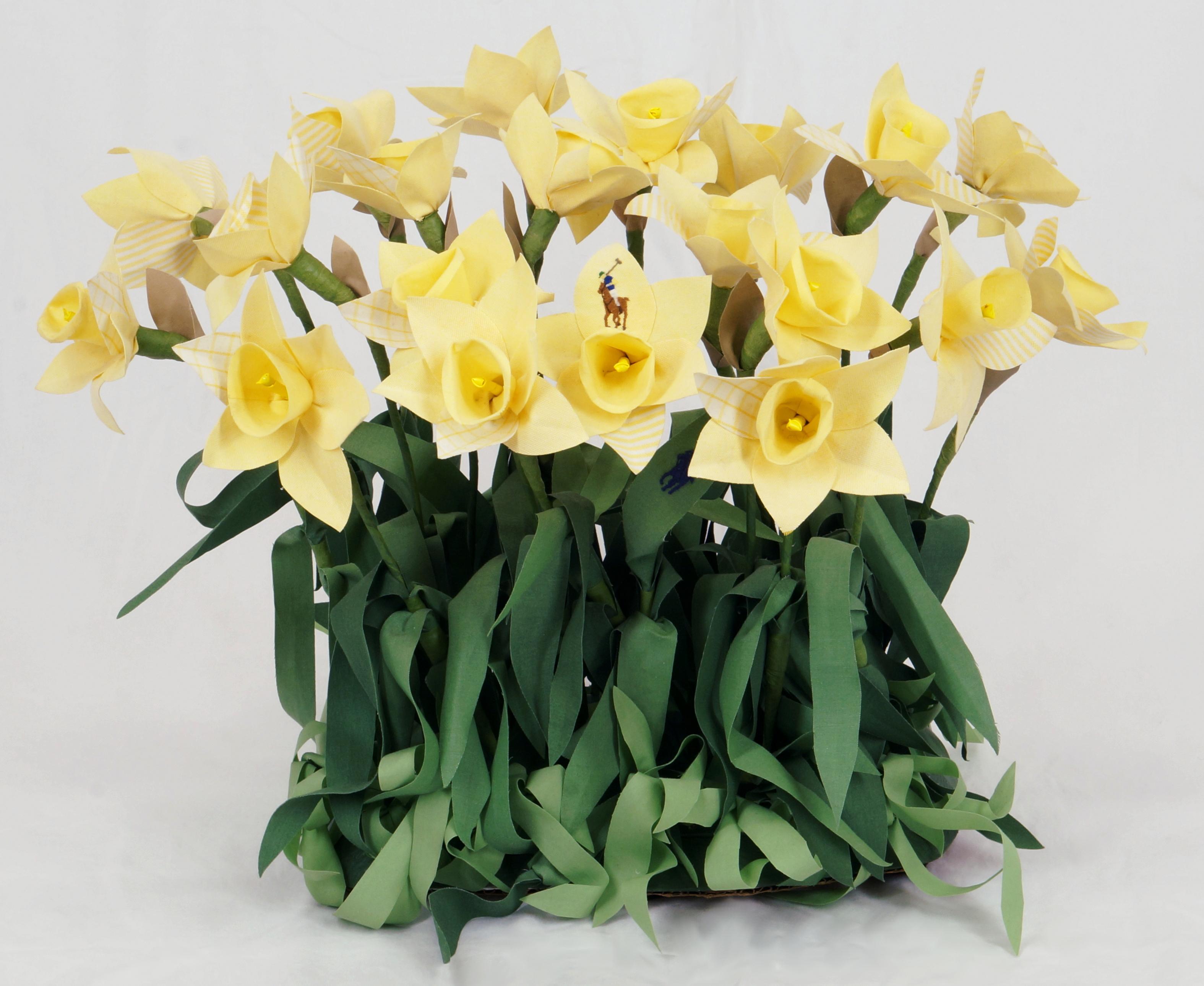 Branded Daffodils