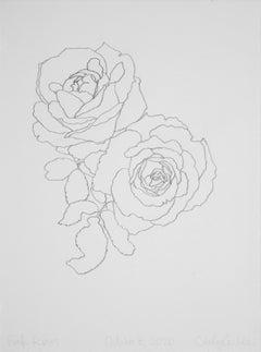 'Pink Roses' - graphite botanical drawing - flower drawing - flora