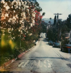 Hollywood #23 (US Road trip Diary) - Polaroid, Landscape, US, Color