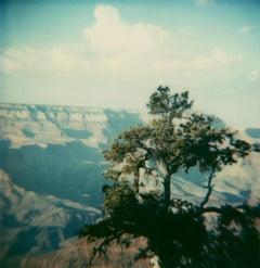 Yosemite #54 (US Road trip Diary) - Polaroid, Landscape, US, Color