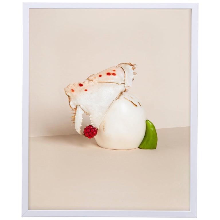 Carmen Mitrotta Dead Food for New World Photo Nr. 12 For Sale