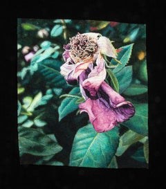 """Fading Rose"", Contemporary, Framed, Textile, Embroidery, Photorealism"