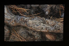 """Ponderosa Root"", Contemporary, Embroidery, Framed, Nature, Earth Tones, Organic"