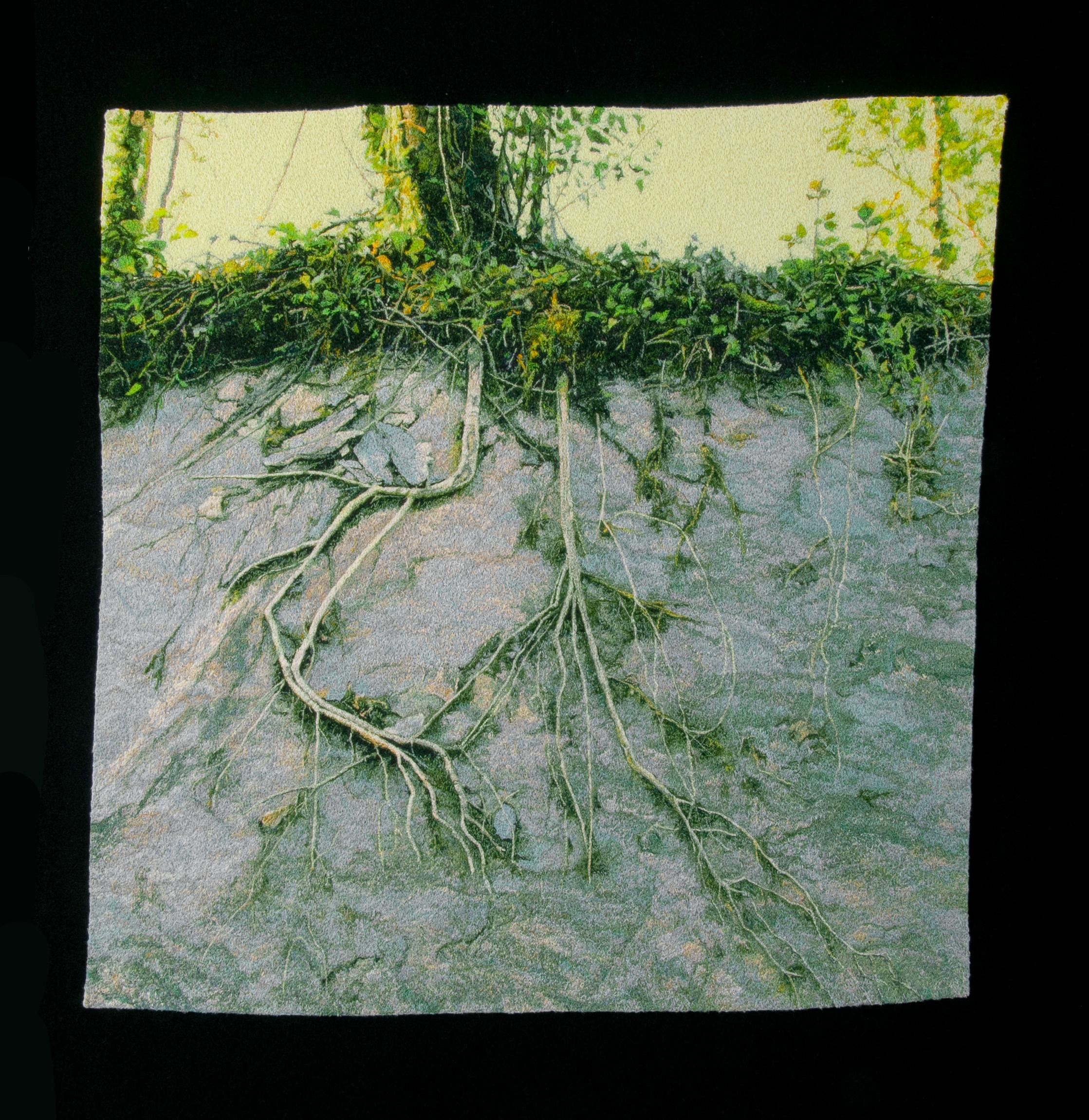 """""""Roots on Stone"""", Contemporary, Embroidery, Framed, Nature, Trees, Photography"""
