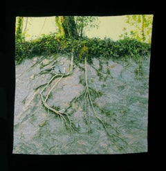 """Roots on Stone"", Contemporary, Embroidery, Framed, Nature, Trees, Photography"