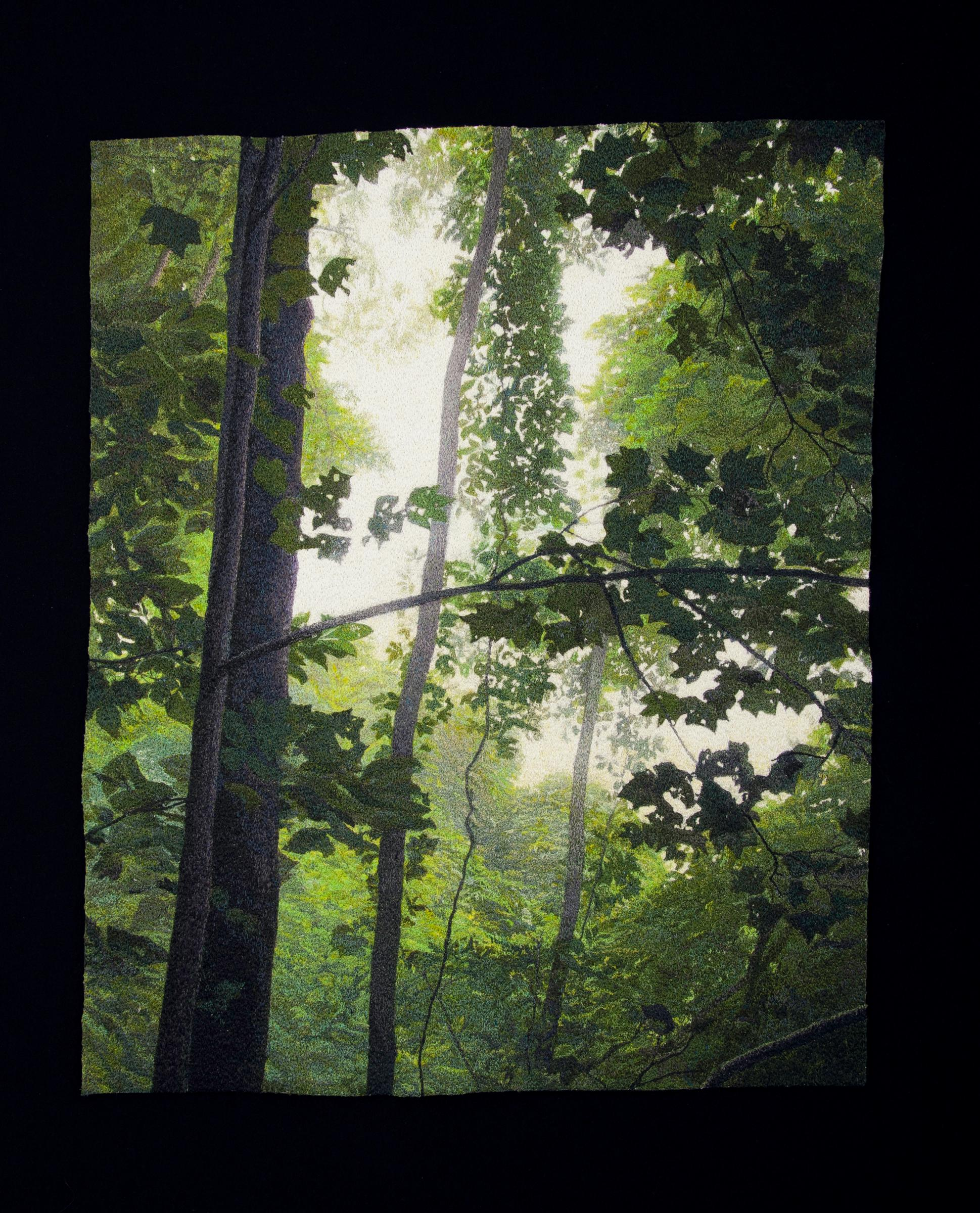 """""""Tree Canopy"""", Contemporary, Framed, Textile, Embroidery, Photorealism, Nature"""