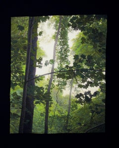"""Tree Canopy"", Contemporary, Framed, Textile, Embroidery, Photorealism, Nature"