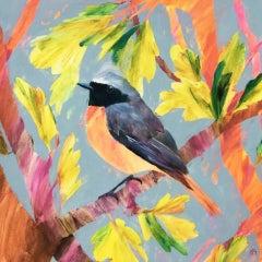 Carolyn Carter, Redstart Oak, Original Bird Painting, Affordable Art