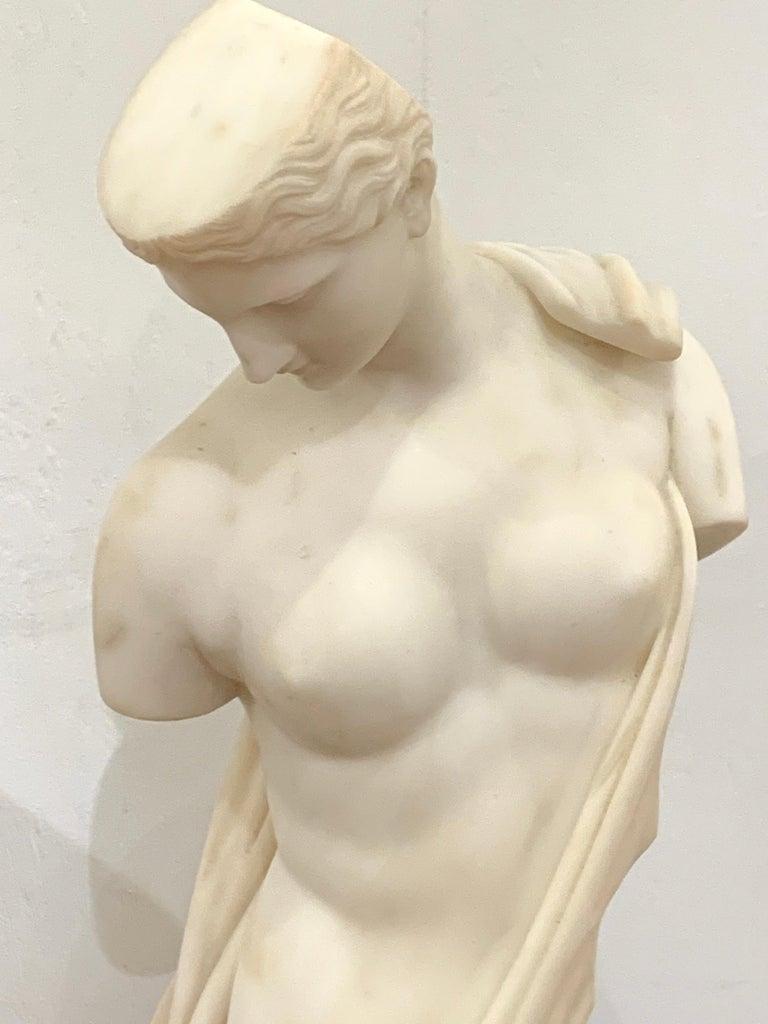 Italian Carrera Marble Grand Tour Torso of Venus, by Leone Clerici, Roma, 1893 For Sale