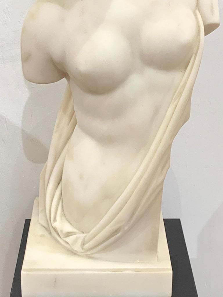 Carved Carrera Marble Grand Tour Torso of Venus, by Leone Clerici, Roma, 1893 For Sale